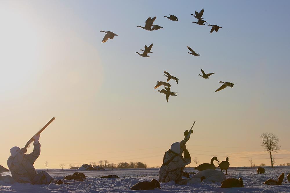 Viltmästareförbundet | Foto: Kristofer Hansson